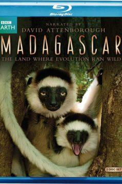 BBC Madagascar 3 Bölüm 720p Bluray Belgesel izle