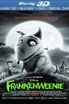 Frankenweenie 3D 1080p Bluray Türkçe Dublaj izle