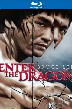 Ejder Kalesi Türkçe Dublaj izle – Enter The Dragon izle