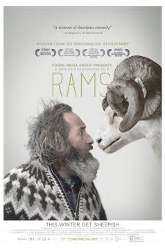 Rams – İnatçılar 2015 Full 1080p izle