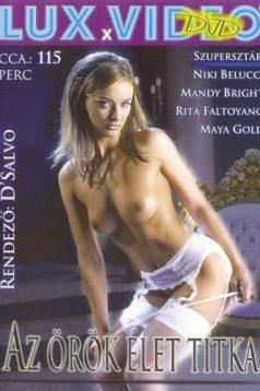 Decadent Love Erotik Film izle