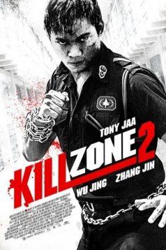 SPL 2 A Time for Consequences – Kill Zone 2 izle 2015 1080p