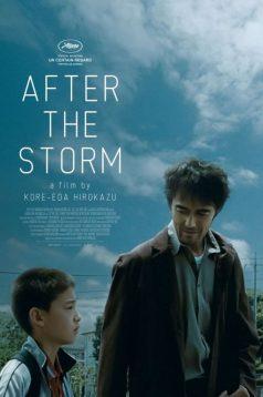 After the Storm – Fırtınadan Sonra izle 2016 HD