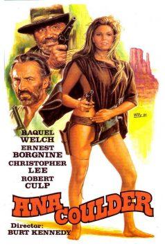 İntikam Meleği – Hannie Caulder 1080p izle 1971