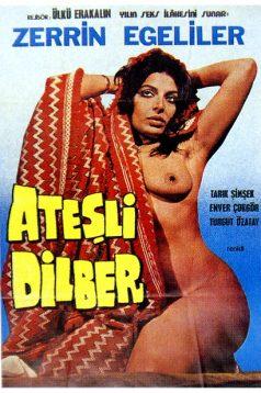 Ateşli Dilber Erotik Film izle