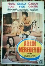 Aklın Neredeydi Erotik Film izle