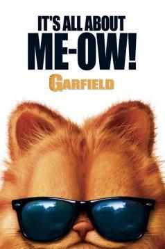 Garfield Türkçe Dublaj izle 1080p 2004